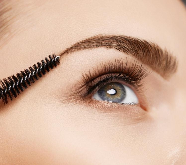 Eyebrow Transplant Offer