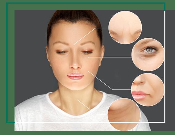 Skin Facial fillers